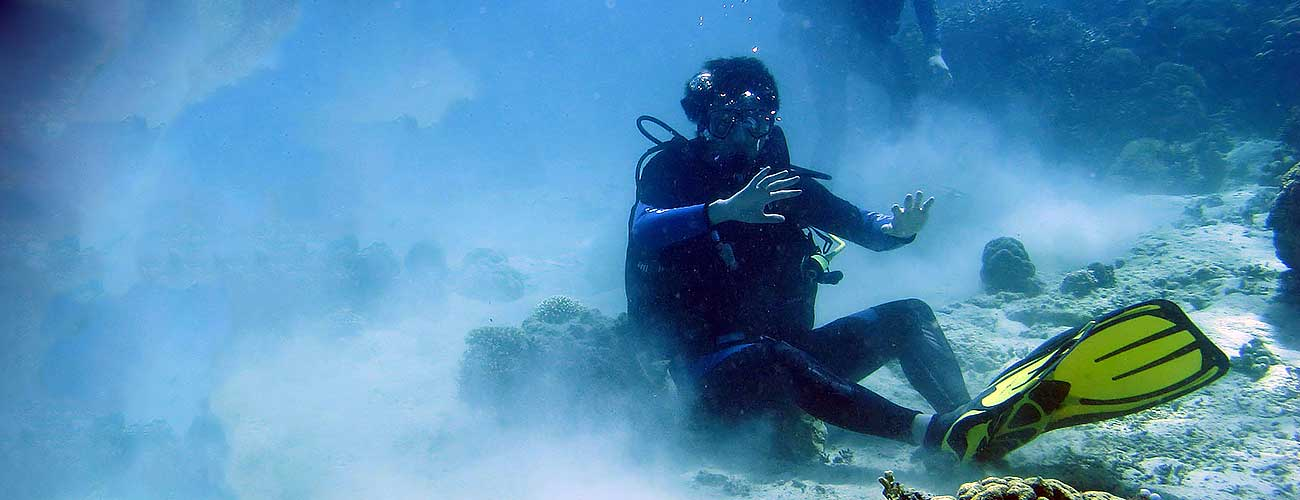 Sitting on coral